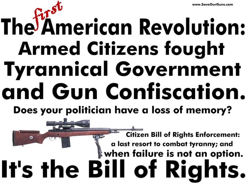 article gun control united states